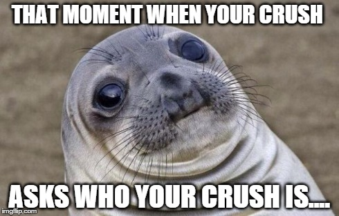 Awkward Moment Sealion | THAT MOMENT WHEN YOUR CRUSH ASKS WHO YOUR CRUSH IS.... | image tagged in memes,awkward moment sealion | made w/ Imgflip meme maker