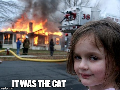 Disaster Girl | IT WAS THE CAT | image tagged in memes,disaster girl | made w/ Imgflip meme maker