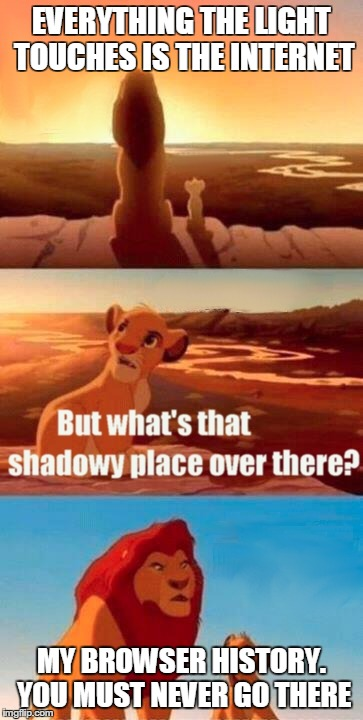 dirty mufasa. | EVERYTHING THE LIGHT TOUCHES IS THE INTERNET MY BROWSER HISTORY. YOU MUST NEVER GO THERE | image tagged in memes,simba shadowy place | made w/ Imgflip meme maker