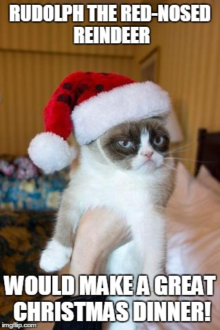 Grumpy Cat Christmas Meme | RUDOLPH THE RED-NOSED REINDEER WOULD MAKE ...