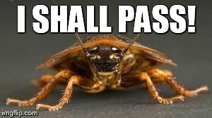 Roach | I SHALL PASS! | image tagged in roach | made w/ Imgflip meme maker