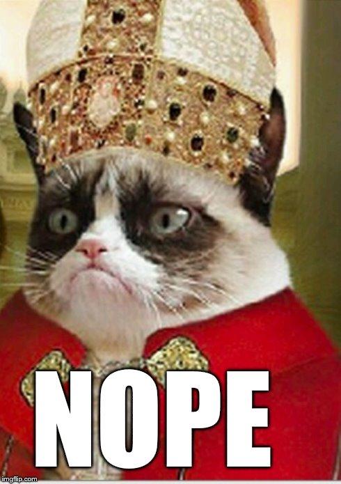 Image Tagged In Memesgrumpy Cat Imgflip