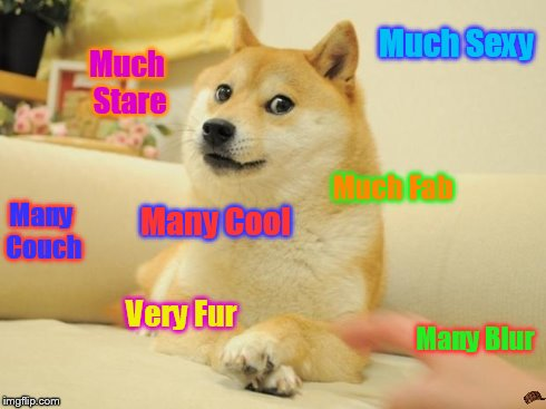 Doge 2 | Much Sexy Much Stare Many Blur Very Fur Many Couch Much Fab Many Cool | image tagged in memes,doge 2,scumbag | made w/ Imgflip meme maker