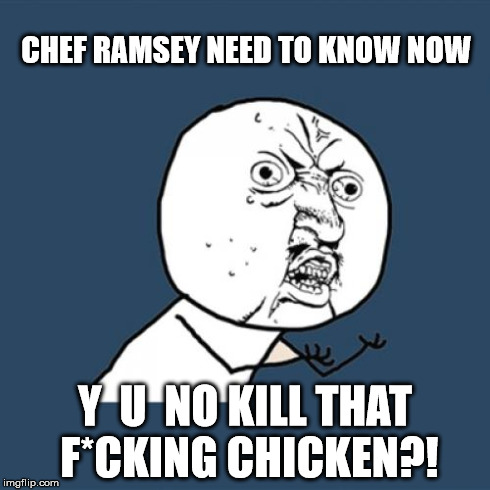 Y U No Meme | CHEF RAMSEY NEED TO KNOW NOW Y  U  NO KILL THAT F*CKING CHICKEN?! | image tagged in memes,y u no | made w/ Imgflip meme maker