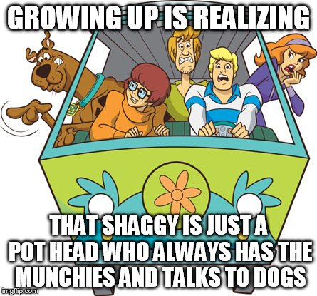 Scooby Doo | GROWING UP IS REALIZING THAT SHAGGY IS JUST A POT HEAD WHO ALWAYS HAS THE MUNCHIES AND TALKS TO DOGS | image tagged in memes,scooby doo | made w/ Imgflip meme maker