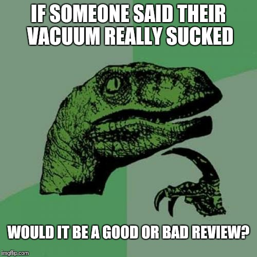 Philosoraptor Meme | IF SOMEONE SAID THEIR VACUUM REALLY SUCKED WOULD IT BE A GOOD OR BAD REVIEW? | image tagged in memes,philosoraptor | made w/ Imgflip meme maker