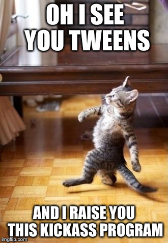 Cool Cat Stroll Meme | OH I SEE YOU TWEENS AND I RAISE YOU THIS KICKASS PROGRAM | image tagged in cool cat stroll | made w/ Imgflip meme maker