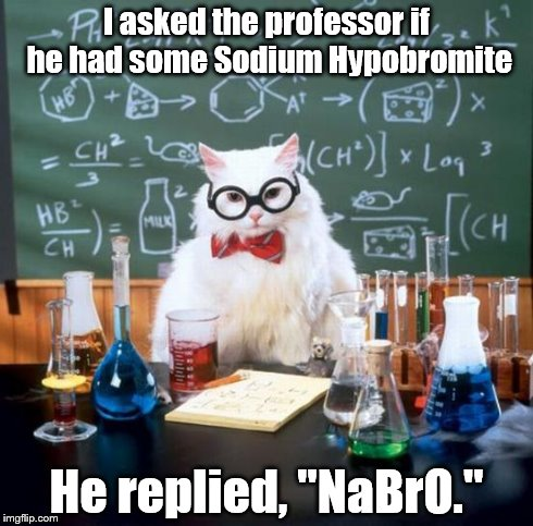 "Chemistry Cat | I asked the professor if he had some Sodium Hypobromite He replied, ""NaBrO."" 