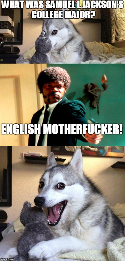 ...and you will know my name is The Lord. | WHAT WAS SAMUEL L JACKSON'S COLLEGE MAJOR? ENGLISH MOTHERF**KER! | image tagged in memes,bad pun dog,pulp fiction,samuel l jackson | made w/ Imgflip meme maker