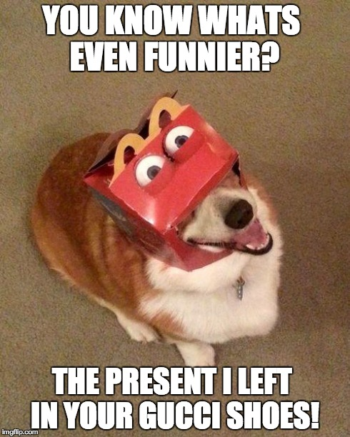 dog face | YOU KNOW WHATS EVEN FUNNIER? THE PRESENT I LEFT IN YOUR GUCCI SHOES! | image tagged in dog face | made w/ Imgflip meme maker
