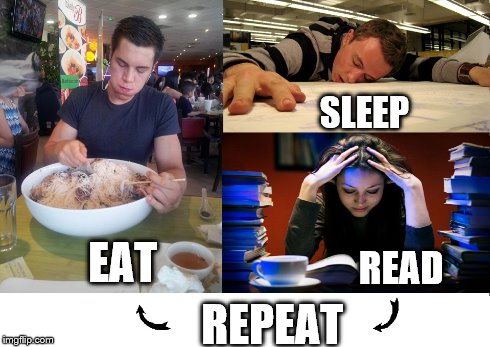 Study Cycle | EAT SLEEP READ REPEAT | image tagged in eat,sleep,read,repeat,college,study | made w/ Imgflip meme maker