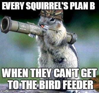cpm8j bazooka squirrel meme imgflip