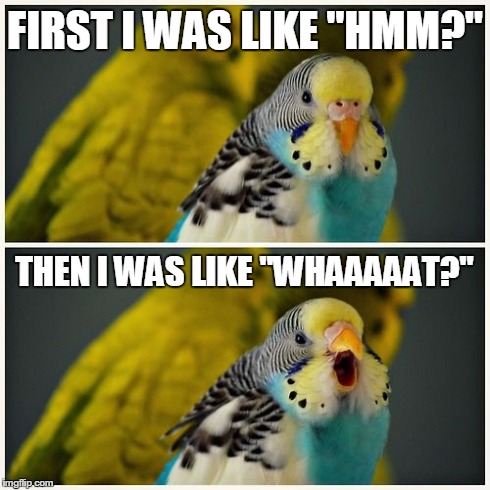 "First I was like | FIRST I WAS LIKE ""HMM?"" THEN I WAS LIKE ""WHAAAAAT?"" 