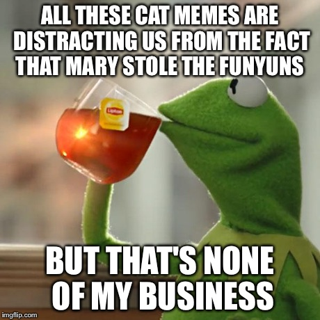 But Thats None Of My Business Meme | ALL THESE CAT MEMES ARE DISTRACTING US FROM THE FACT THAT MARY STOLE THE FUNYUNS BUT THAT'S NONE OF MY BUSINESS | image tagged in memes,but thats none of my business,kermit the frog | made w/ Imgflip meme maker