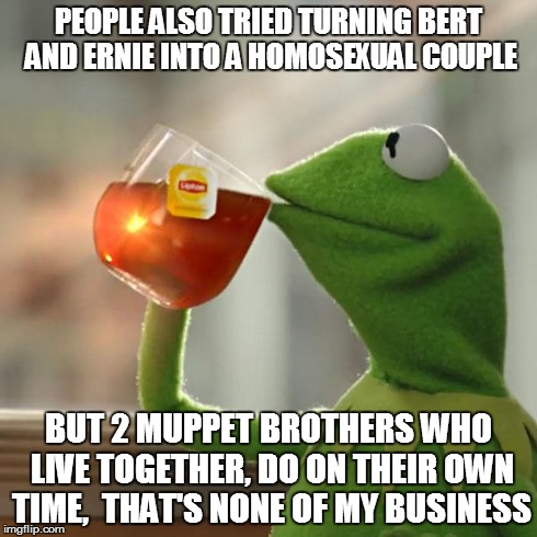 But Thats None Of My Business Meme | PEOPLE ALSO TRIED TURNING BERT AND ERNIE INTO A HOMOSEXUAL COUPLE BUT 2 MUPPET BROTHERS WHO LIVE TOGETHER, DO ON THEIR OWN TIME,  THAT'S NON | image tagged in memes,but thats none of my business,kermit the frog | made w/ Imgflip meme maker