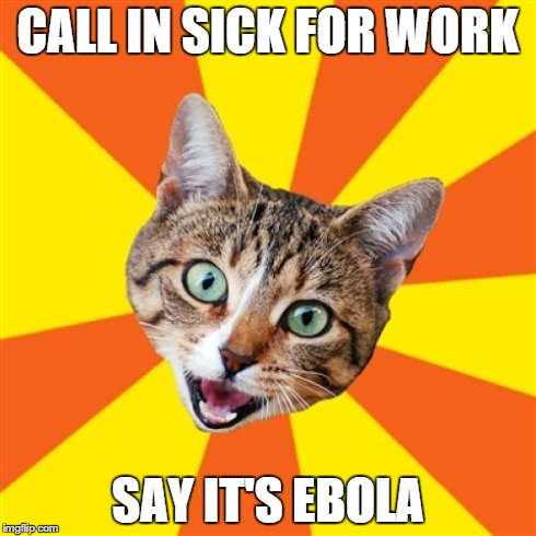 Trust me... This will work... | CALL IN SICK FOR WORK SAY IT'S EBOLA | image tagged in memes,bad advice cat,ebola,work,sick | made w/ Imgflip meme maker