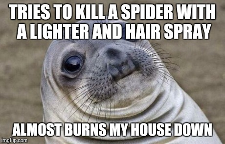 Awkward Moment Sealion Meme | TRIES TO KILL A SPIDER WITH A LIGHTER AND HAIR SPRAY ALMOST BURNS MY HOUSE DOWN | image tagged in memes,awkward moment sealion | made w/ Imgflip meme maker