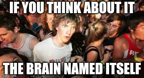 Sudden Clarity Clarence Meme | IF YOU THINK ABOUT IT THE BRAIN NAMED ITSELF | image tagged in memes,sudden clarity clarence | made w/ Imgflip meme maker