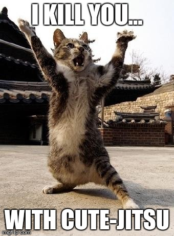 kung fu kitten | I KILL YOU... WITH CUTE-JITSU | image tagged in kung fu kitten | made w/ Imgflip meme maker