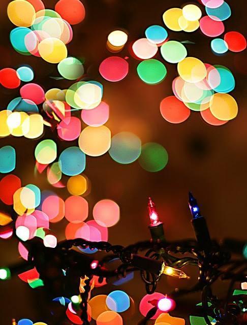 Christmas Lights Blank Template - Imgflip