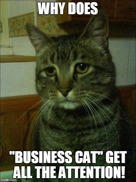 Business Cat Meme Maker