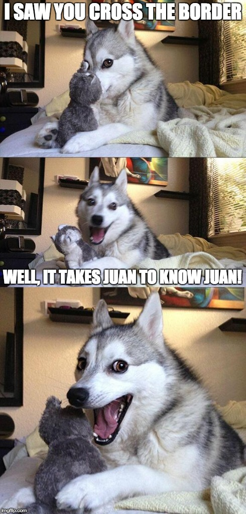 Bad Pun Dog Meme | I SAW YOU CROSS THE BORDER WELL, IT TAKES JUAN TO KNOW JUAN! | image tagged in memes,bad pun dog | made w/ Imgflip meme maker