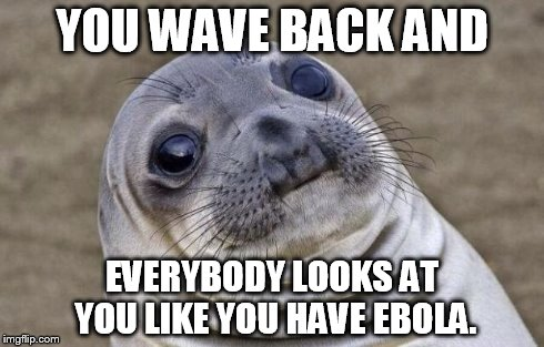 Awkward Moment Sealion Meme | YOU WAVE BACK AND EVERYBODY LOOKS AT YOU LIKE YOU HAVE EBOLA. | image tagged in memes,awkward moment sealion | made w/ Imgflip meme maker