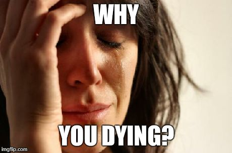 First World Problems Meme | WHY YOU DYING? | image tagged in memes,first world problems | made w/ Imgflip meme maker