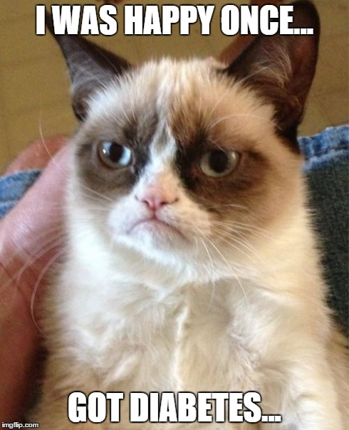 Grumpy Cat Meme | I WAS HAPPY ONCE... GOT DIABETES... | image tagged in memes,grumpy cat | made w/ Imgflip meme maker