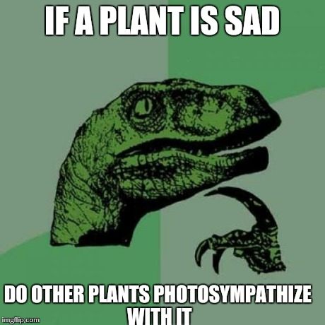 Philosoraptor Meme | IF A PLANT IS SAD DO OTHER PLANTS PHOTOSYMPATHIZE WITH IT | image tagged in memes,philosoraptor | made w/ Imgflip meme maker