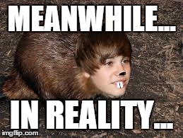 After reading a report on how celebrities try to ban photoshop images... | MEANWHILE... IN REALITY... | image tagged in justin beaver,photo,shop,photoshop,lol,funny | made w/ Imgflip meme maker