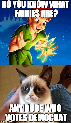 Grumpy Cat Does Not Believe | DO YOU KNOW WHAT FAIRIES ARE? ANY DUDE WHO VOTES DEMOCRAT | image tagged in memes,grumpy cat does not believe | made w/ Imgflip meme maker
