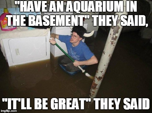 "Laundry Viking | ""HAVE AN AQUARIUM IN THE BASEMENT"" THEY SAID, ""IT'LL BE GREAT"" THEY SAID 