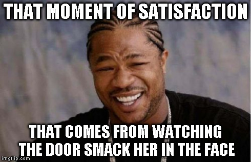 Yo Dawg Heard You Meme | THAT MOMENT OF SATISFACTION THAT COMES FROM WATCHING THE DOOR SMACK HER IN THE FACE | image tagged in memes,yo dawg heard you | made w/ Imgflip meme maker