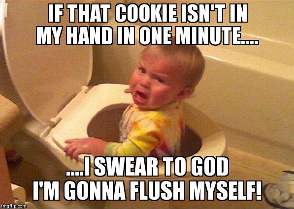 Funny Baby Meme Creator : The cookie ultimatum imgflip