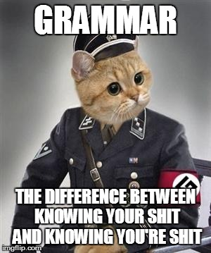 Grammar Nazi Cat | GRAMMAR THE DIFFERENCE BETWEEN KNOWING YOUR SHIT AND KNOWING YOU'RE SHIT | image tagged in grammar nazi cat | made w/ Imgflip meme maker