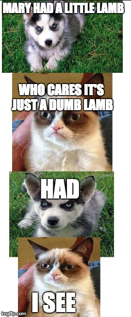 """Had"" 