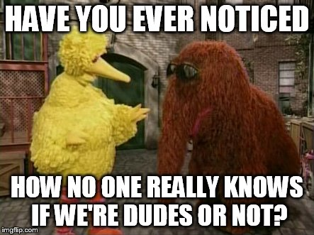 Big Bird And Snuffy | HAVE YOU EVER NOTICED HOW NO ONE REALLY KNOWS IF WE'RE DUDES OR NOT? | image tagged in memes,big bird and snuffy | made w/ Imgflip meme maker