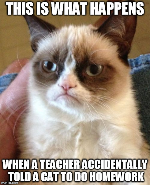 Grumpy Cat Meme | THIS IS WHAT HAPPENS WHEN A TEACHER ACCIDENTALLY TOLD A CAT TO DO HOMEWORK | image tagged in memes,grumpy cat | made w/ Imgflip meme maker
