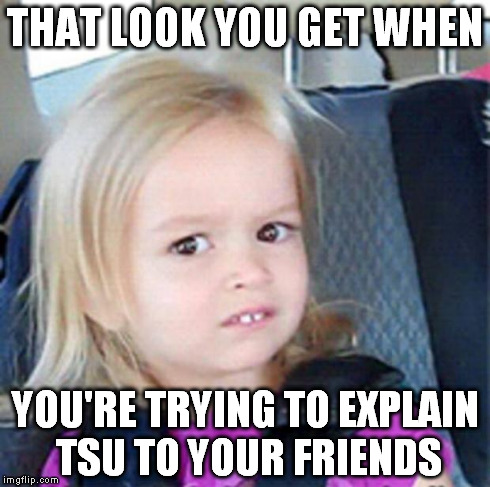Confused Little Girl | THAT LOOK YOU GET WHEN YOU'RE TRYING TO EXPLAIN TSU TO YOUR FRIENDS | image tagged in confused little girl | made w/ Imgflip meme maker