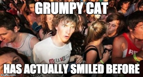 Sudden Clarity Clarence Meme | GRUMPY CAT HAS ACTUALLY SMILED BEFORE | image tagged in memes,sudden clarity clarence | made w/ Imgflip meme maker