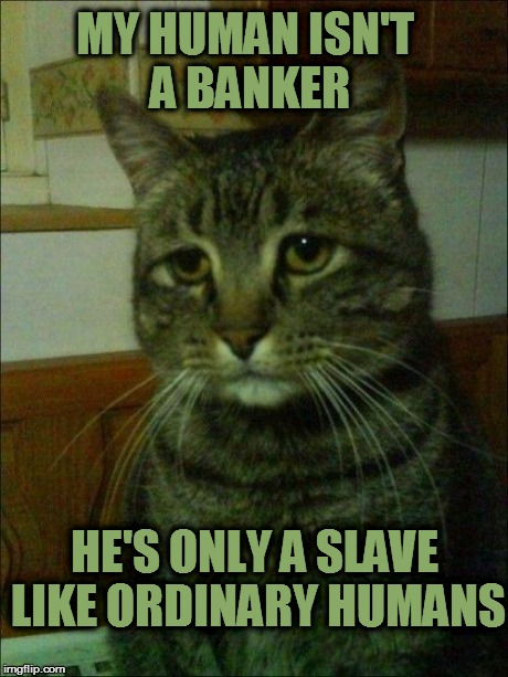 Depressed Cat Meme | MY HUMAN ISN'T A BANKER HE'S ONLY A SLAVE LIKE ORDINARY HUMANS | image tagged in memes,depressed cat | made w/ Imgflip meme maker