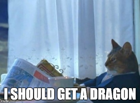 I Should Buy A Boat Cat Meme | I SHOULD GET A DRAGON | image tagged in memes,i should buy a boat cat,AdviceAnimals | made w/ Imgflip meme maker