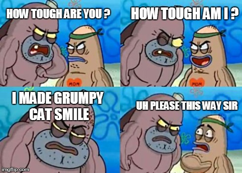 How Tough Are You Meme | HOW TOUGH ARE YOU ? I MADE GRUMPY CAT SMILE HOW TOUGH AM I ? UH PLEASE THIS WAY SIR | image tagged in memes,how tough are you | made w/ Imgflip meme maker