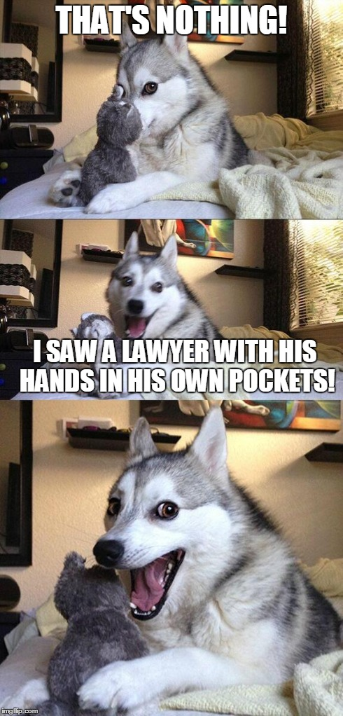 Bad Pun Dog Meme | THAT'S NOTHING! I SAW A LAWYER WITH HIS HANDS IN HIS OWN POCKETS! | image tagged in memes,bad pun dog | made w/ Imgflip meme maker