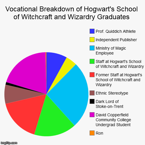 Vocational Breakdown of Hogwart's School of Witchcraft and Wizardry Graduates | Vocational Breakdown of Hogwart's School of Witchcraft and Wizardry Graduates | Ron, David Copperfield Community College Undergrad Student,  | image tagged in funny,pie charts,harry potter,voldemort,witch | made w/ Imgflip chart maker
