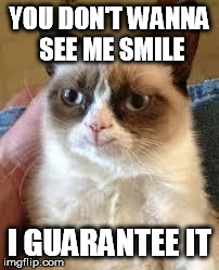 YOU DON'T WANNA SEE ME SMILE I GUARANTEE IT | image tagged in happy cat | made w/ Imgflip meme maker