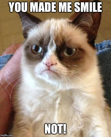 Grumpy Cat Meme | YOU MADE ME SMILE NOT! | image tagged in memes,grumpy cat | made w/ Imgflip meme maker