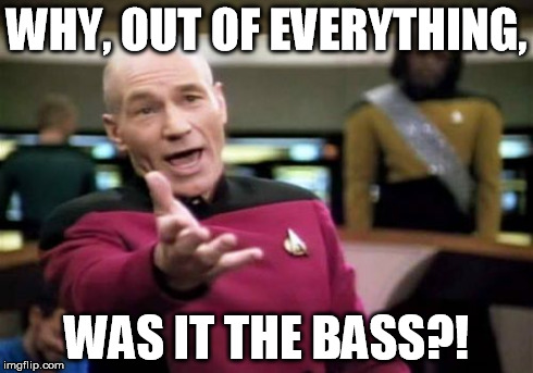 Picard Wtf Meme | WHY, OUT OF EVERYTHING, WAS IT THE BASS?! | image tagged in memes,picard wtf | made w/ Imgflip meme maker
