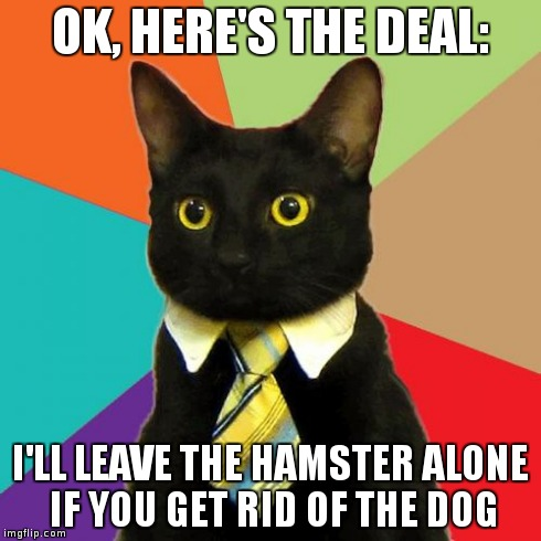 Business Cat Meme | OK, HERE'S THE DEAL: I'LL LEAVE THE HAMSTER ALONE IF YOU GET RID OF THE DOG | image tagged in memes,business cat | made w/ Imgflip meme maker